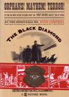 Black Diamond Detective Agency, The